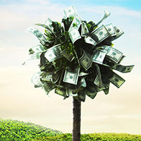 Tips to Manifesting Money